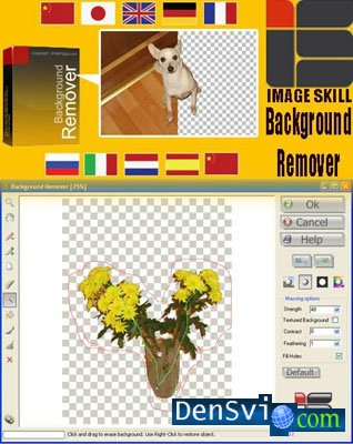 Image Skill Background Remover