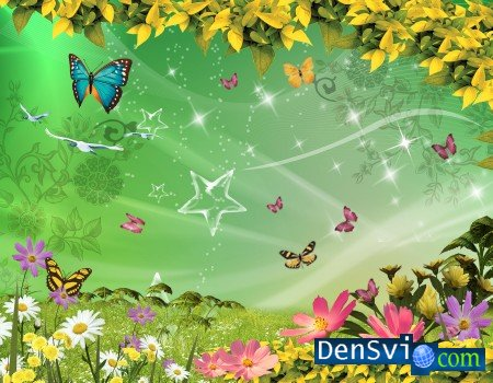 PSD template -  Butterfly