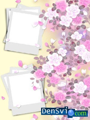 Gentle Photoframe with pink colours and petals