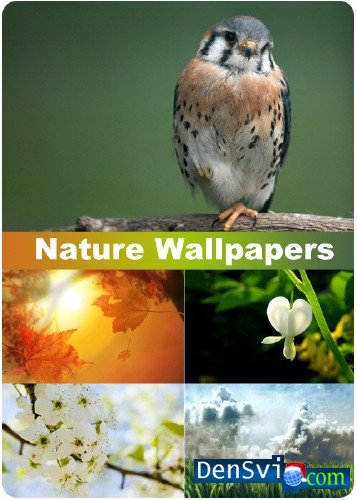 �������� ���� - ������� - Nature Wallpapers