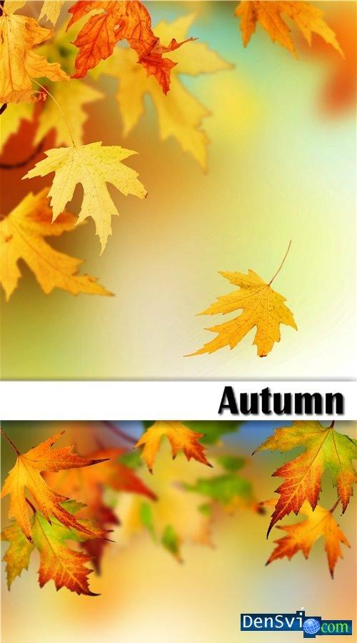 клипарт осень скачать: