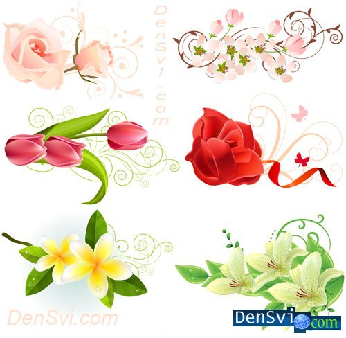 Clipart floral vector backgrounds