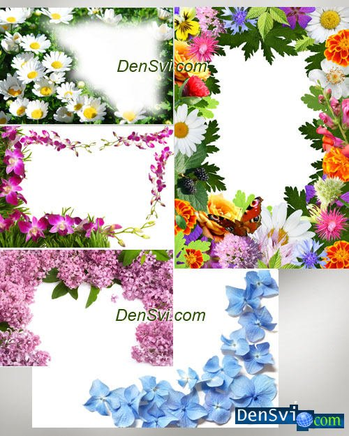 Клипарт декоративные цветочные