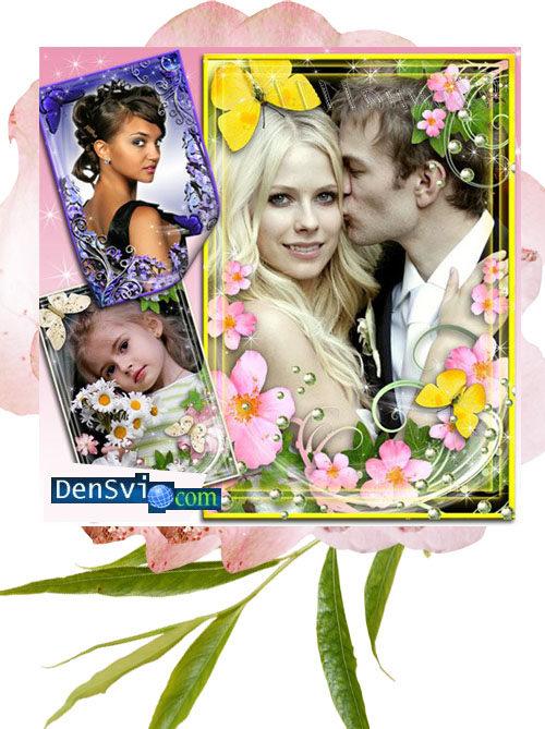 Рамки фотошопа цветов нежнейший