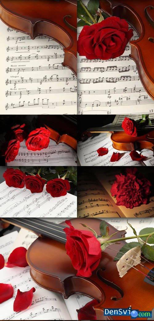 Фоны фотошопа романтические скрипка