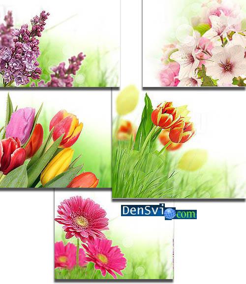 Весенние открытки с цветами