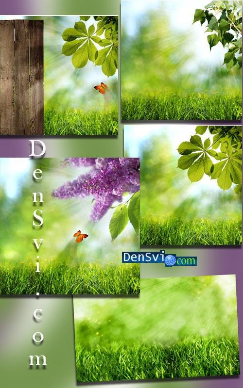 Зелёные летние фоны фотошоп новая