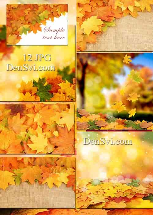 Фоны фотошоп осенние листья