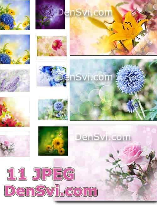 Весенние цветы завораживающие фоны