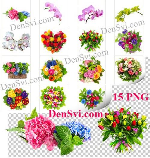 Цветочный клипарт PNG - Многоцветье - Клипарты Фотошоп