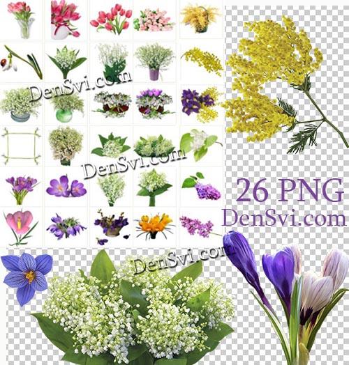 Цветы оригинальные клипарты фотошоп
