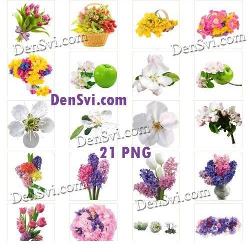 Весенние цветы - Совершенные клипарты Фотошоп