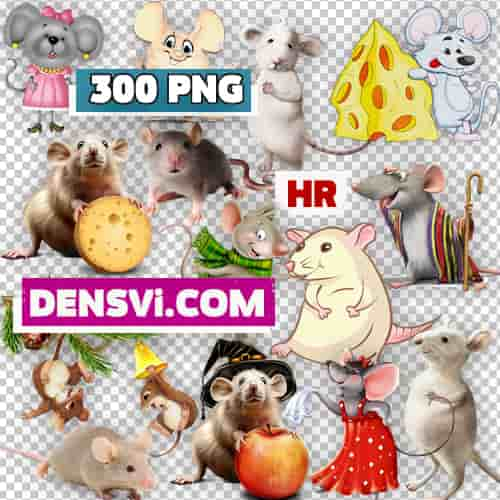 Rat mouse transparent background free